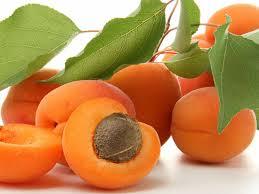 apricotblog