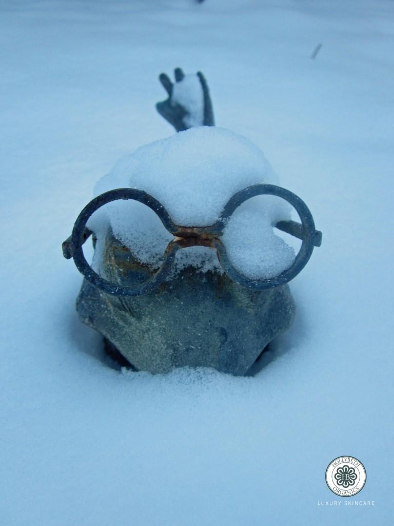 SNOWFROG